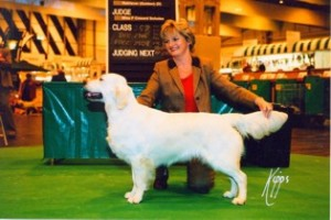 Champion Xanthos Effervescent standing