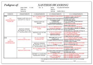 Xanthos Swansong pedigree
